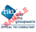 tiki consultant logo.png